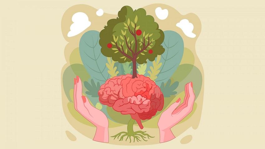 Đầu tư cho não bộ