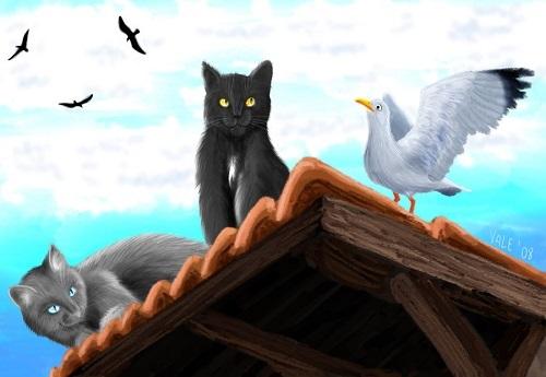 Ý nghĩa chuyện con mèo dạy hải âu bay
